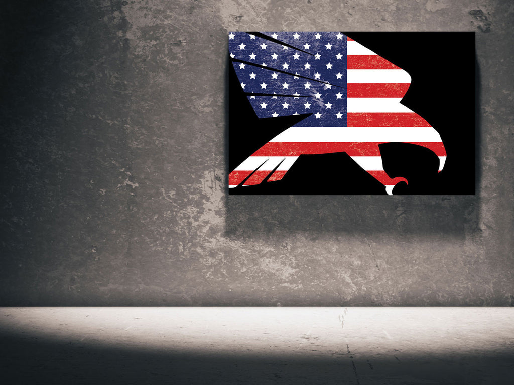 Canvas The Falcon - US Flag