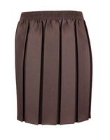 Brown Box Pleat Skirt