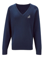 Debden Park V Neck Jumper