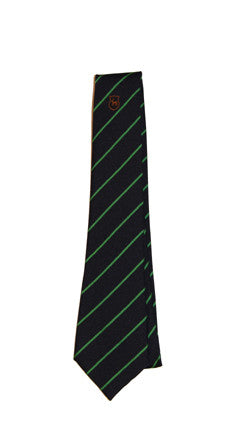 Debden Park Tie (Green Stripe) YEAR 9 2020/2021