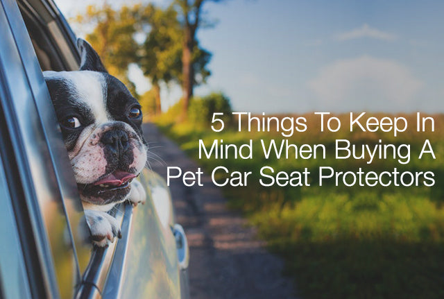 5 Things To Keep in Mind When Buying A Pet Car Seat Protectors
