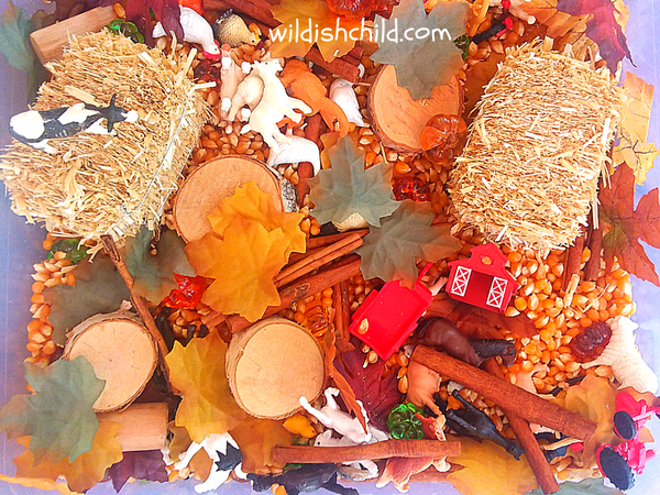 wildish child farm in the fall sensory bin