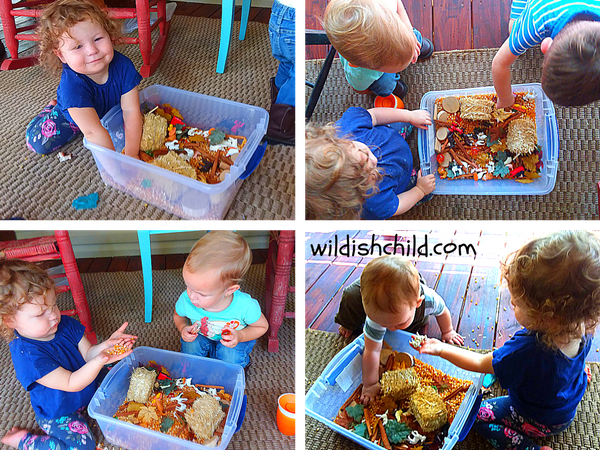 wildish child pumpkins and play time babies playing with fall on the farm sensory bin