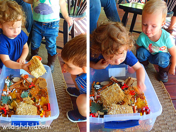 wildish child pumpkins and play time babies playing with farm in the fall sensory bin