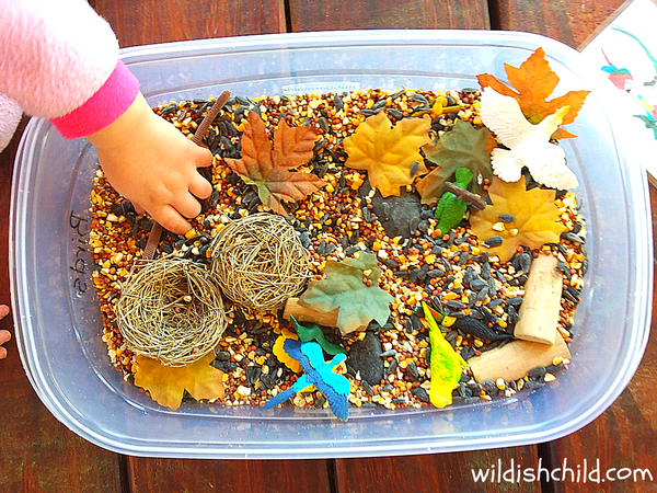 wildish child bird sensory bin little hand in bin