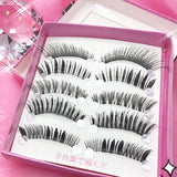 5 different types of Top Eyelashes - Ohmykitty Online Store
