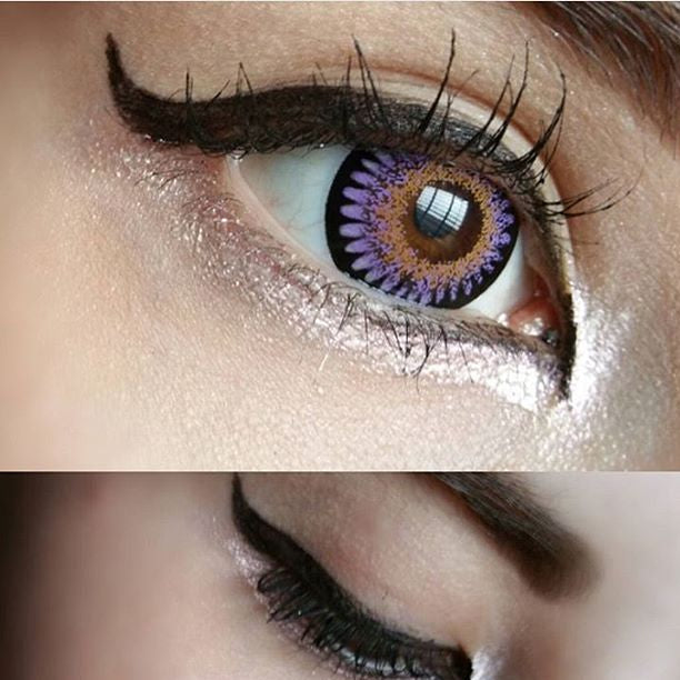 bambi-violet-close-up-contacts.jpg
