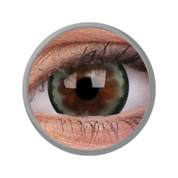 clyte-grey-contact-lenses.jpg