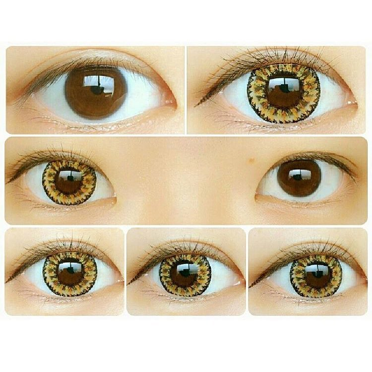 gaudy-brown-ick-lenses-contacts.jpg