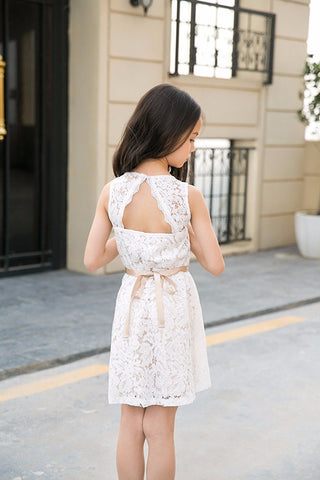 Sleeveless Allover Lace Cutout Tie Back A Line Dress