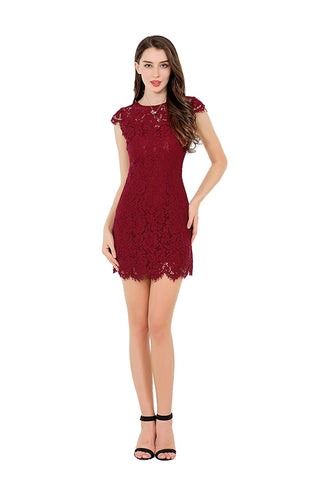 Round Neck Cap Sleeve Lace Dress Lined