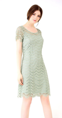 Allover Lace Shift Dress Short Sleeve, Lined