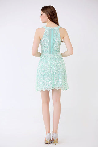 Allover Lace Halter Dress Mesh Inserts Fit n Flare