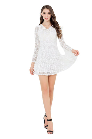 Double Deep V Neck Long Sleeve Lace Dress