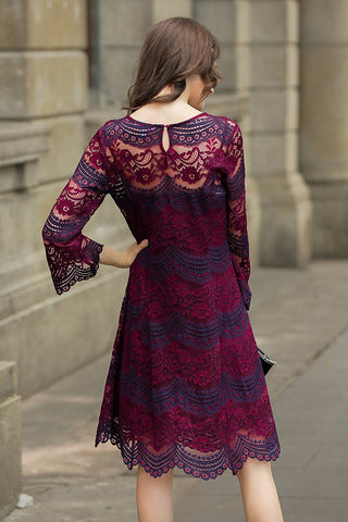 Two Tone Long Sleeve V Neck Lace Dress Lined