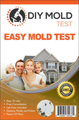 DIY Mold Test - Mold testing kit for home