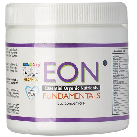 Dom & Cleo EON Fundamentals Supplement