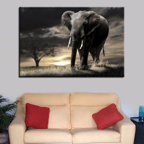 Elephant in the Safari Sunset - TheCanvasWarehouse