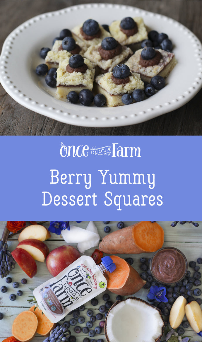 Berry Yummy Dessert Squares