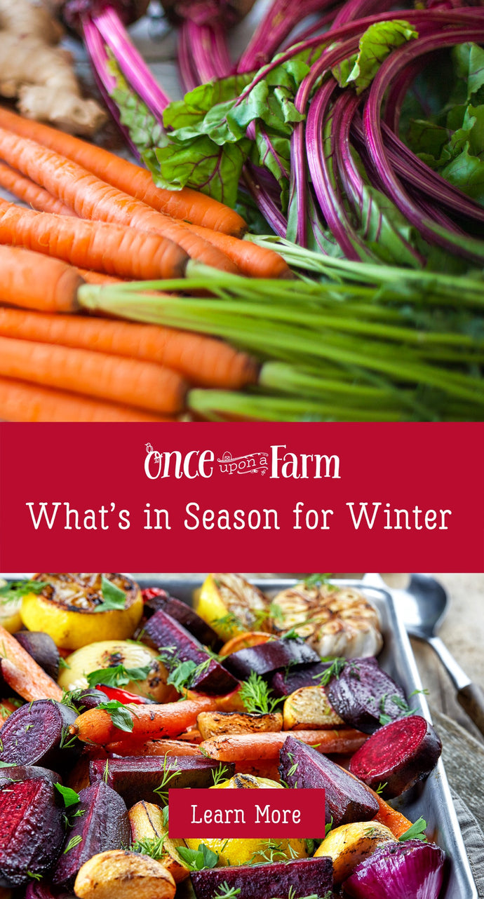 What's in Season this Winter