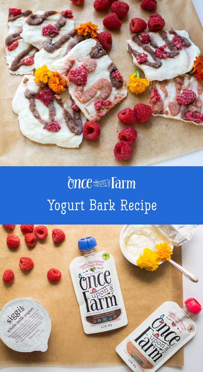 Yogurt Bark Recipe