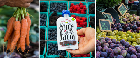 organic ingredients used in once upon a farm baby food