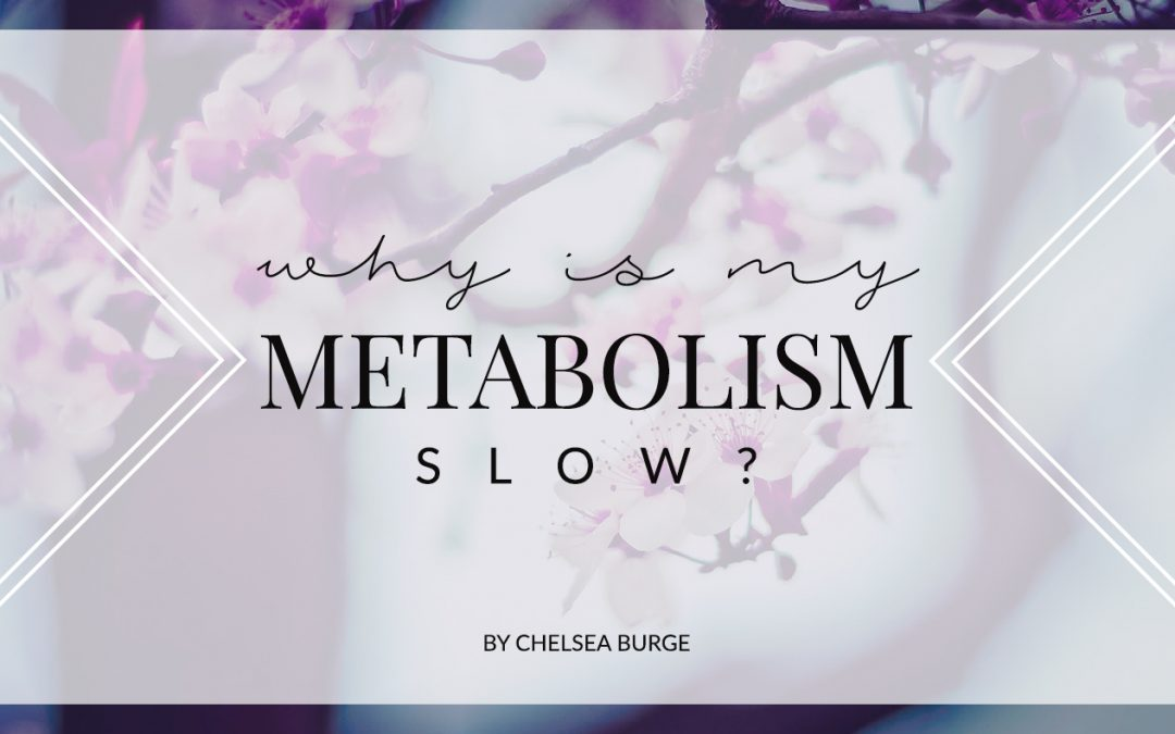 HOW TO PREVENT SLOW METABOLISM WITH AGE?