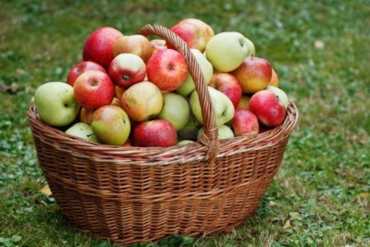 7 HEALTH BENEFITS OF APPLE