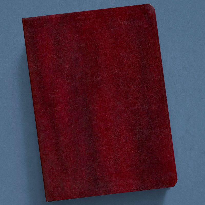 The New Inductive Study Bible-Esv (Milano Softone) Burgundy