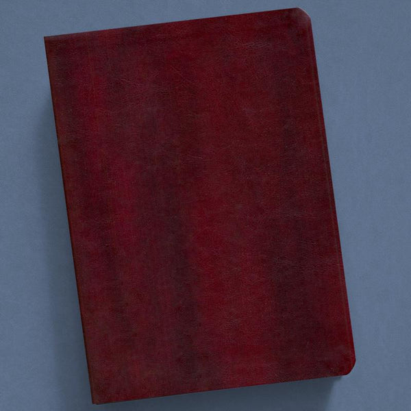 The New Inductive Study Bible-Nasb (Milano Softone) Burgundy