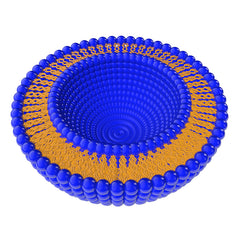 Close up of liposomes