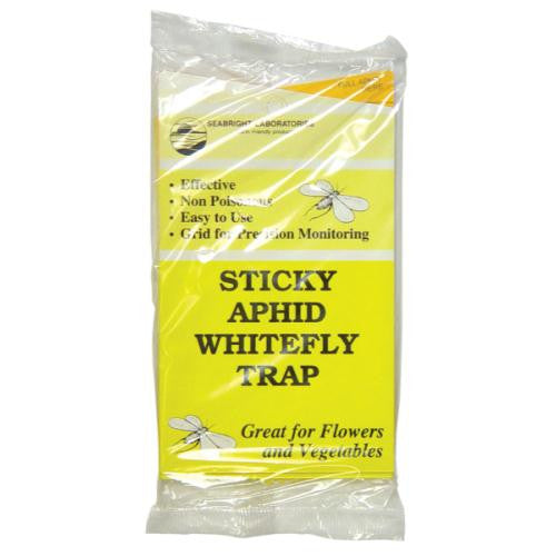 Sticky Whitefly Trap 5/Pack (80/Cs)