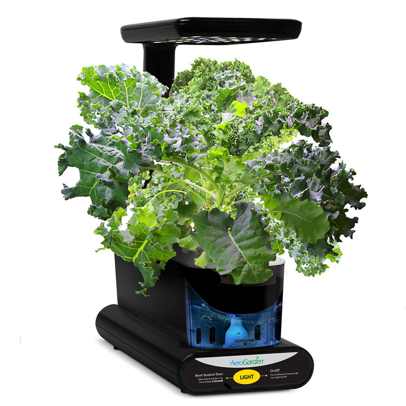 3-Pod Mixed Kale Seed Kit