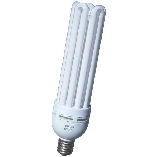 125w Compact Fluorescent (Warm)