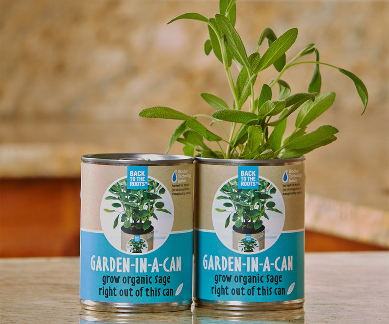 Garden in a Can Sage (12/cs)