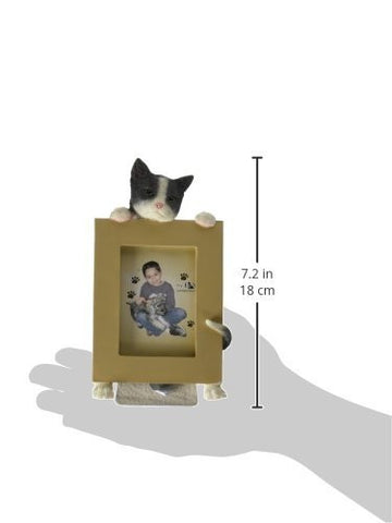 E&S Pets Small Cat Frame