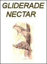 Exotic Island Pets Glider-ade Nectar Supplement 2 oz Bag