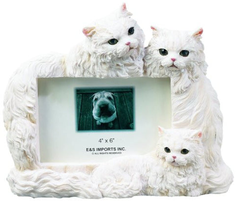 E & S Pets 35297-3 Large Cat Frame