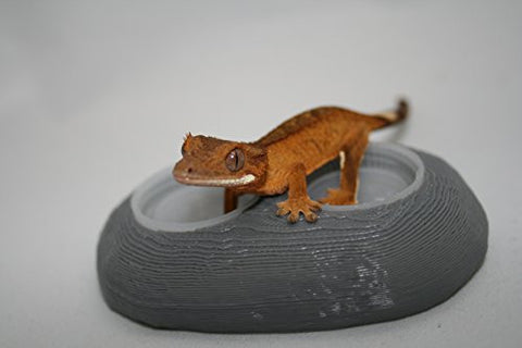 3 Dual Bottle Cap Gecko & Reptile Feeder Dishes