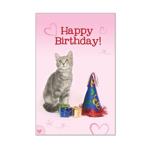 LittleGifts 10-Pack Happy Birthday Cat Cards