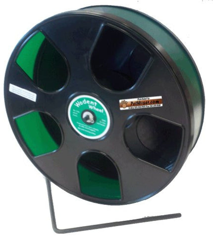 "Rodent - Semi-Enclosed Exercise Wodent Wheel 'Sr.' 11"" Green"
