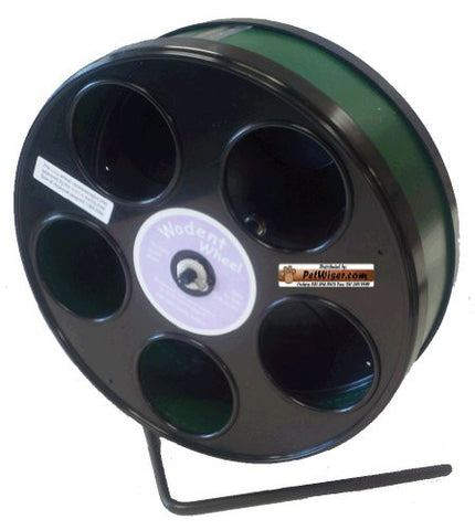 "Rodent - Semi-Enclosed Exercise Wodent Wheel 'Jr.' 8"" Green"