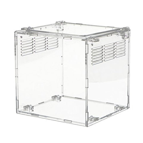 Happy Pet Acrylic Reptile Terrarium Habitat, Ideal for Larvae spiders, ants, scorpions and other small reptiles, 15 * 15 * 15 cm, transparent