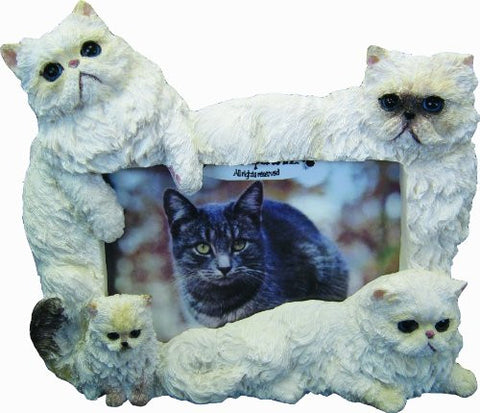 E&S Pets 35297-8 Large Cat Frames