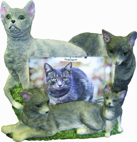 E&S Pets 35297-11 Large Cat Frames
