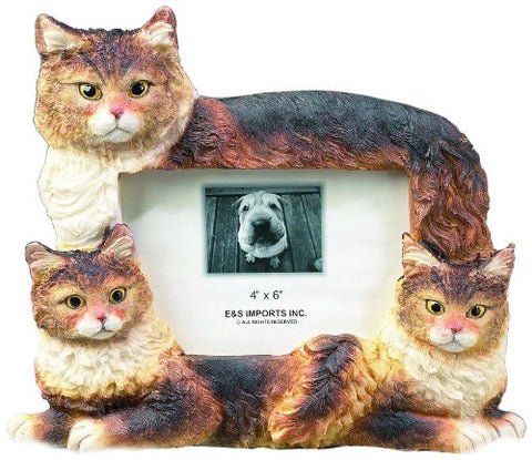 E&S Pets 35297-5 Large Cat Frames