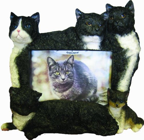 E&S Pets 35297-14 Large Cat Frames