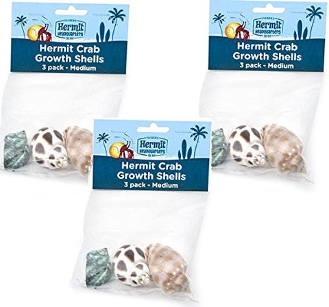 (3 Pack) Flukers Hermit Crab Growth Shells, Medium, 3 Shells each