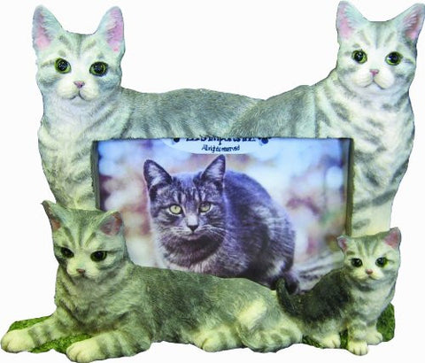 E&S Pets 35297-12 Large Cat Frames