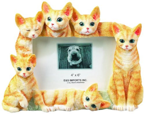E & S Pets 35297-7 Large Cat Frame